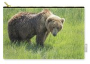 Don't Mess With Mama Bear Carry-all Pouch by Belinda Greb