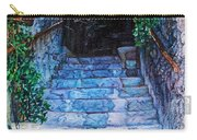 Doorsteps Carry-all Pouch