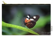 Doris Longwing Butterfly 2017 Carry-all Pouch
