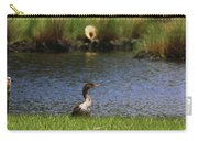 Double-crested Cormorant 3 Carry-all Pouch