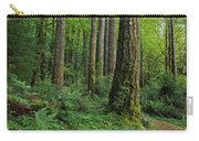 Douglas-fir Carry-all Pouch