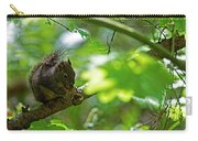 Douglas Squirrel Drops Nut Carry-all Pouch