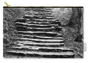 Dovedale Steps Carry-all Pouch