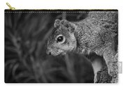 Downward Facing Squirrel Carry-all Pouch