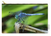 Dragonfly Color Carry-all Pouch