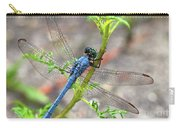 Dragonfly Delight Carry-all Pouch