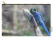 Dragonfly Wing Detail Carry-all Pouch
