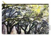Dreamy Live Oaks Carry-all Pouch