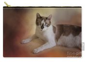 Dreamy Snowshoe Cat Carry-all Pouch