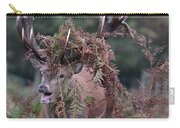 Dressed Red Stag Carry-all Pouch
