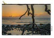 Driftwood Sunrise Carry-all Pouch