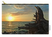 Driftwood Sunset Carry-all Pouch
