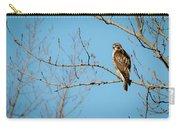 Drive By Hawk Carry-all Pouch