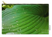 Drops Of Spring Rain Carry-all Pouch