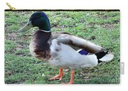 Duck - Standing Carry-all Pouch