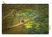 Duck Tales.  Carry-all Pouch