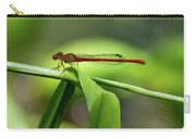 Duckweed Firetail Damselfly Carry-all Pouch