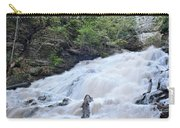Dunnings Falls Carry-all Pouch