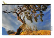 Dusk Dance Carry-all Pouch by Skip Hunt