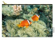 Dusky Clownfish Carry-all Pouch