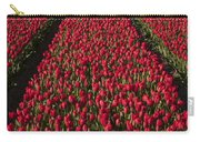 Dutch Tulips Second Shoot Of 2015 Part 1 Carry-all Pouch