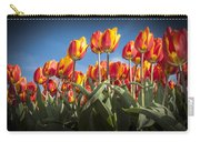 Dutch Tulips Second Shoot Of 2015 Part 2 Carry-all Pouch