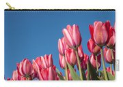 Dutch Tulips Second Shoot Of 2015 Part 8 Carry-all Pouch