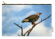 Eagle And Blue Sky Carry-all Pouch