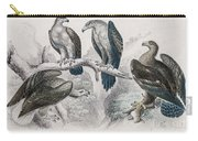 Eagle Birds Print Carry-all Pouch