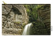 Eagle Cliff Falls Carry-all Pouch