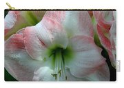 Easter Amaryllis Carry-all Pouch