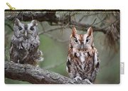 Eastern Screech Owls 424 Carry-all Pouch