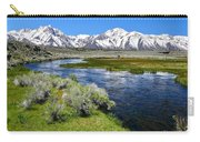 Eastern Sierra Mountains Carry-all Pouch