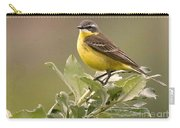 Eastern Yellow Wagtail Carry-all Pouch