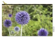 Curious Echinop Peeking At The Camera Carry-all Pouch by Helga Novelli