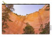 Echo Amphitheater Carry-all Pouch