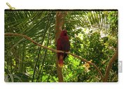 Eclectus Parrot 1 Carry-all Pouch