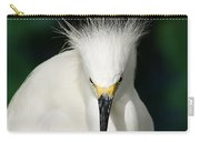 Egret 2 Carry-all Pouch