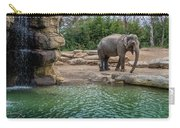 Elephant And Waterfall Carry-all Pouch
