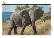 Elephant Crossing Dirt Track Facing Towards Camera Carry-all Pouch