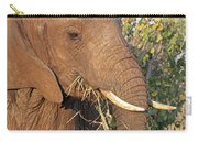 Elephant - Curled Trunk Carry-all Pouch