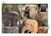 Elephant Faces Carry-all Pouch