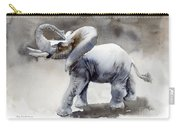 Elephant Light Study  Carry-all Pouch