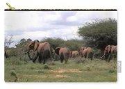Elephant Walk Tsavo National Park Kenya Carry-all Pouch