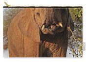 Elephant's Supper Time Carry-all Pouch