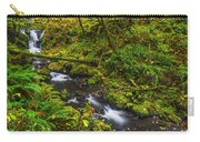 Emerald Falls And Creek In Autumn  Carry-all Pouch
