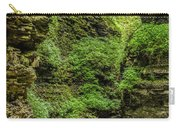 Emerald Gorge Carry-all Pouch