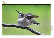 Enjoying The Rain - Ruby-throated Hummingbird Carry-all Pouch