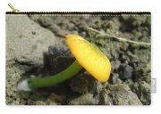 Entoloma Incanum Carry-all Pouch
