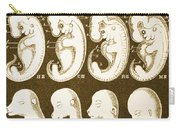 Ernst Haeckels Evolution Of Man, 1874 Carry-all Pouch